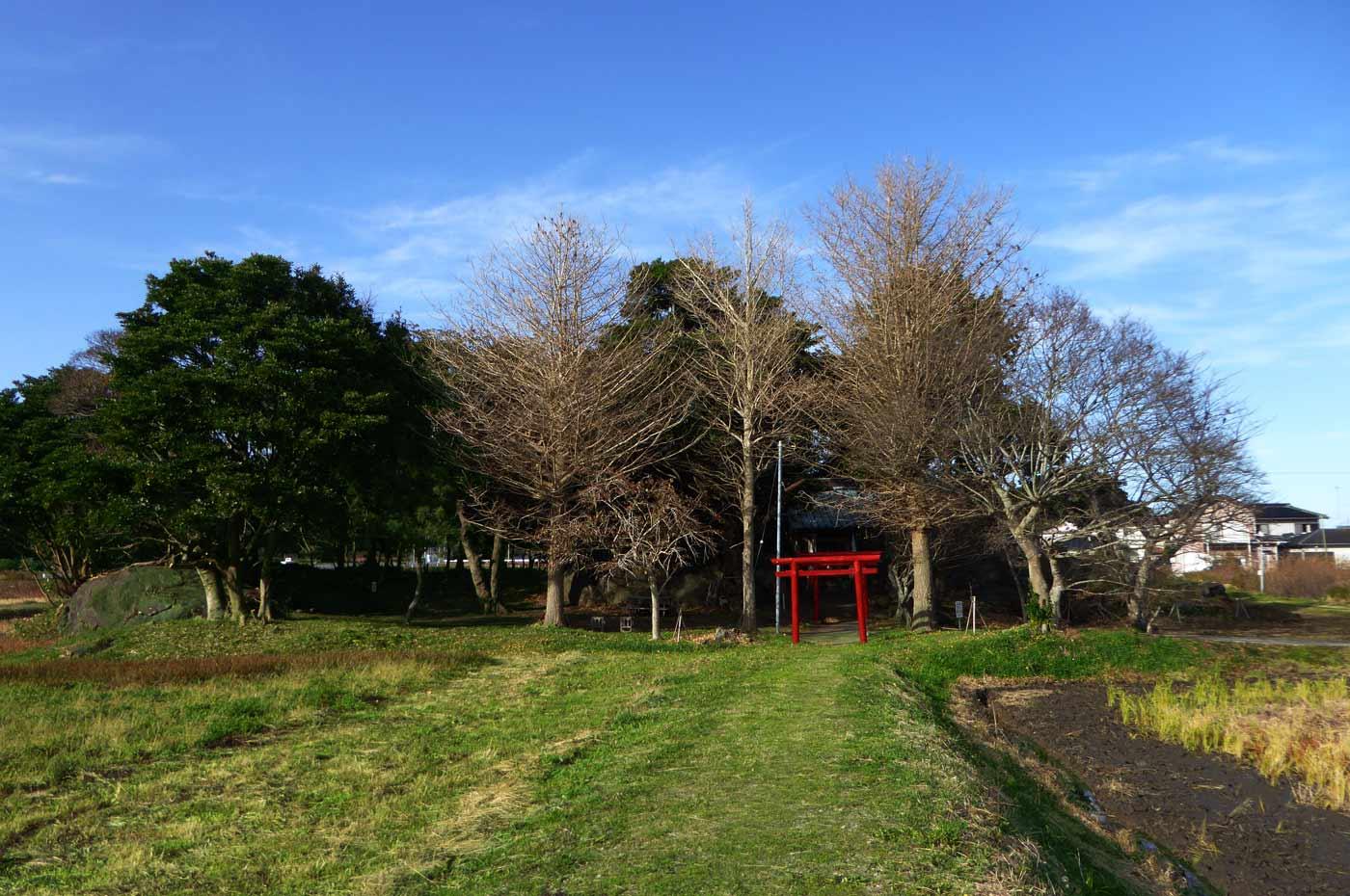 田んぼの中にある平舘天神社の写真