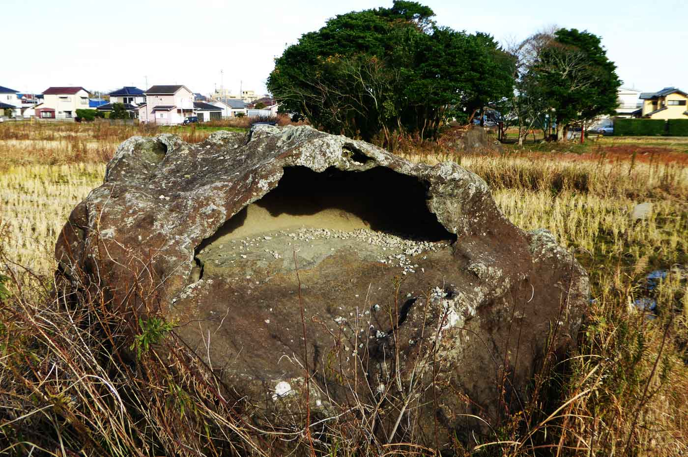 田んぼの中のカエル岩の写真