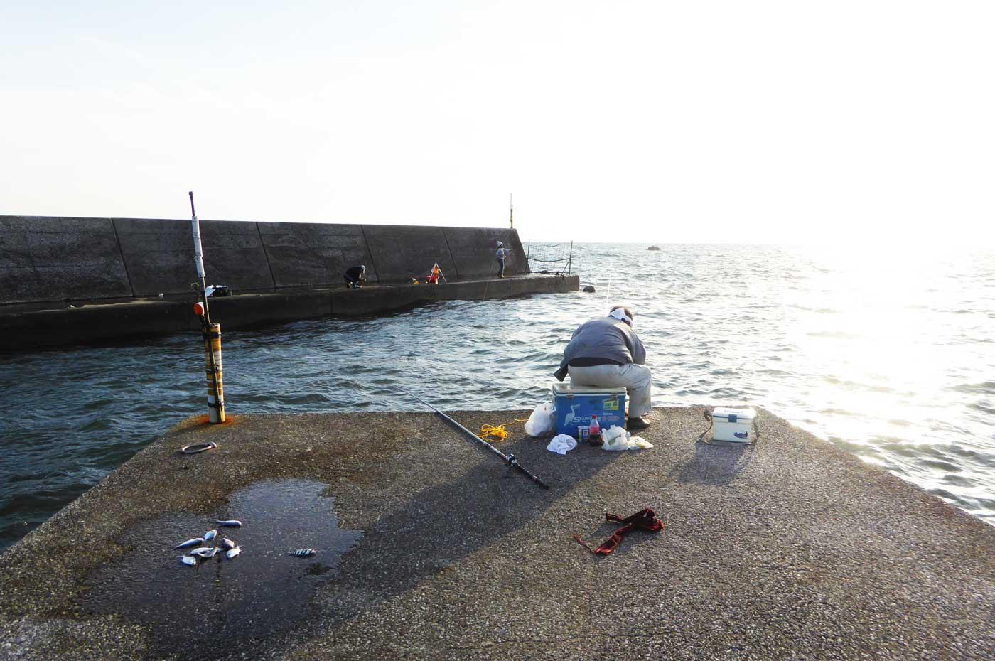 根本港右側堤防のポイントの画像