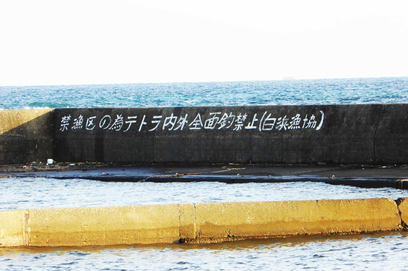 根本港左側堤防の画像