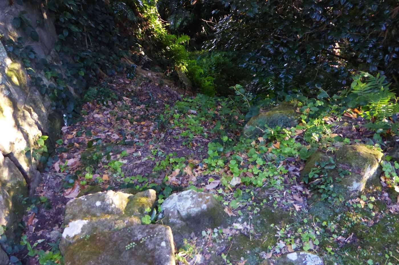 滝壺への降り口の画像