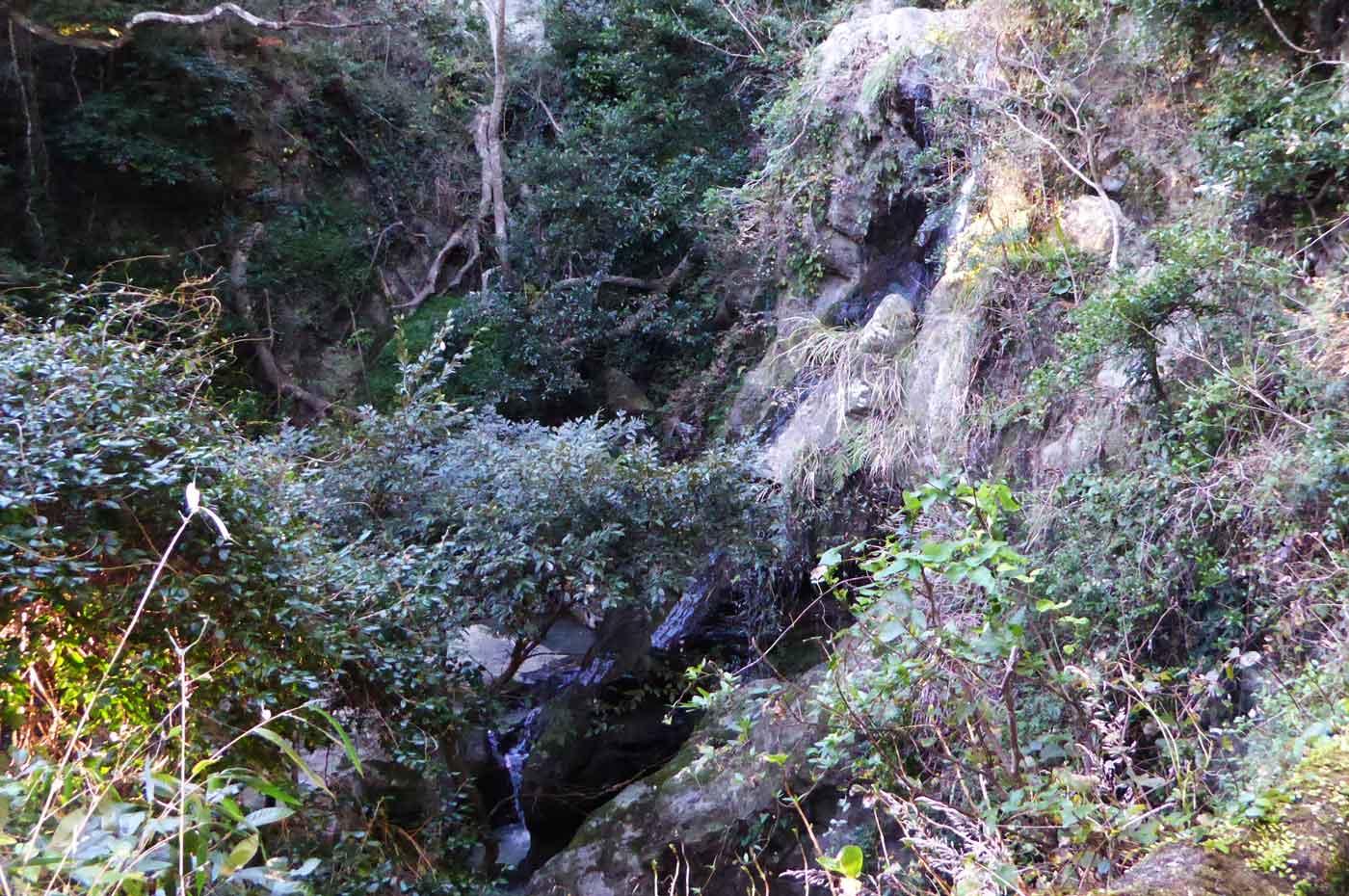 太海不動滝の画像