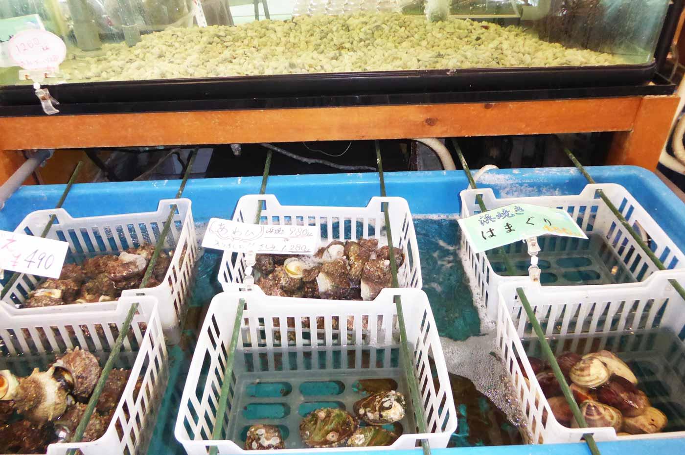 「漁港食堂だいぼ」の活け貝