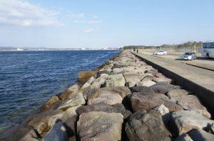 沖ノ島から自衛隊堤防を望む