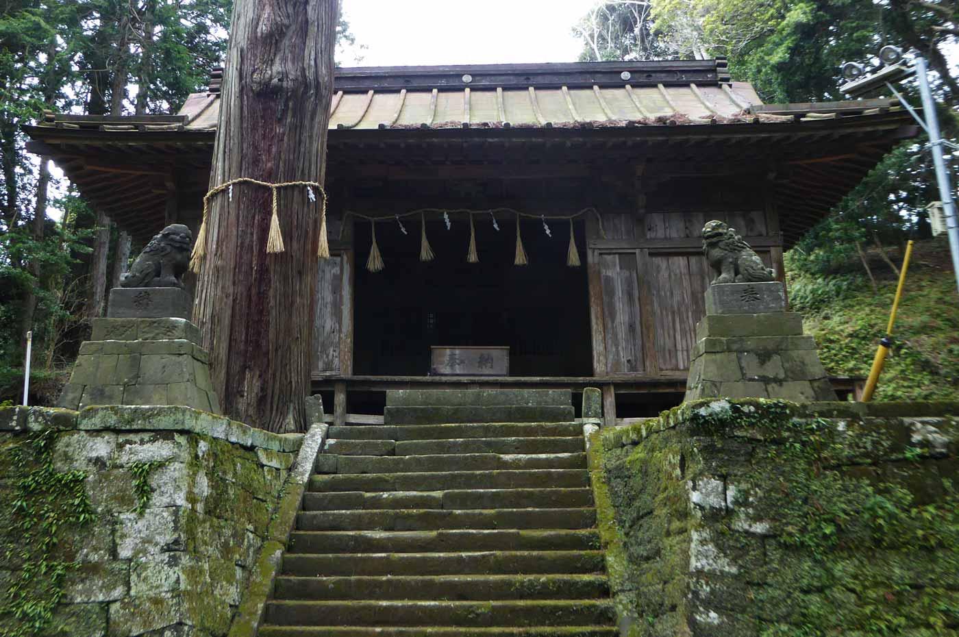 拝殿と御神木(館山市指定天然記念物)
