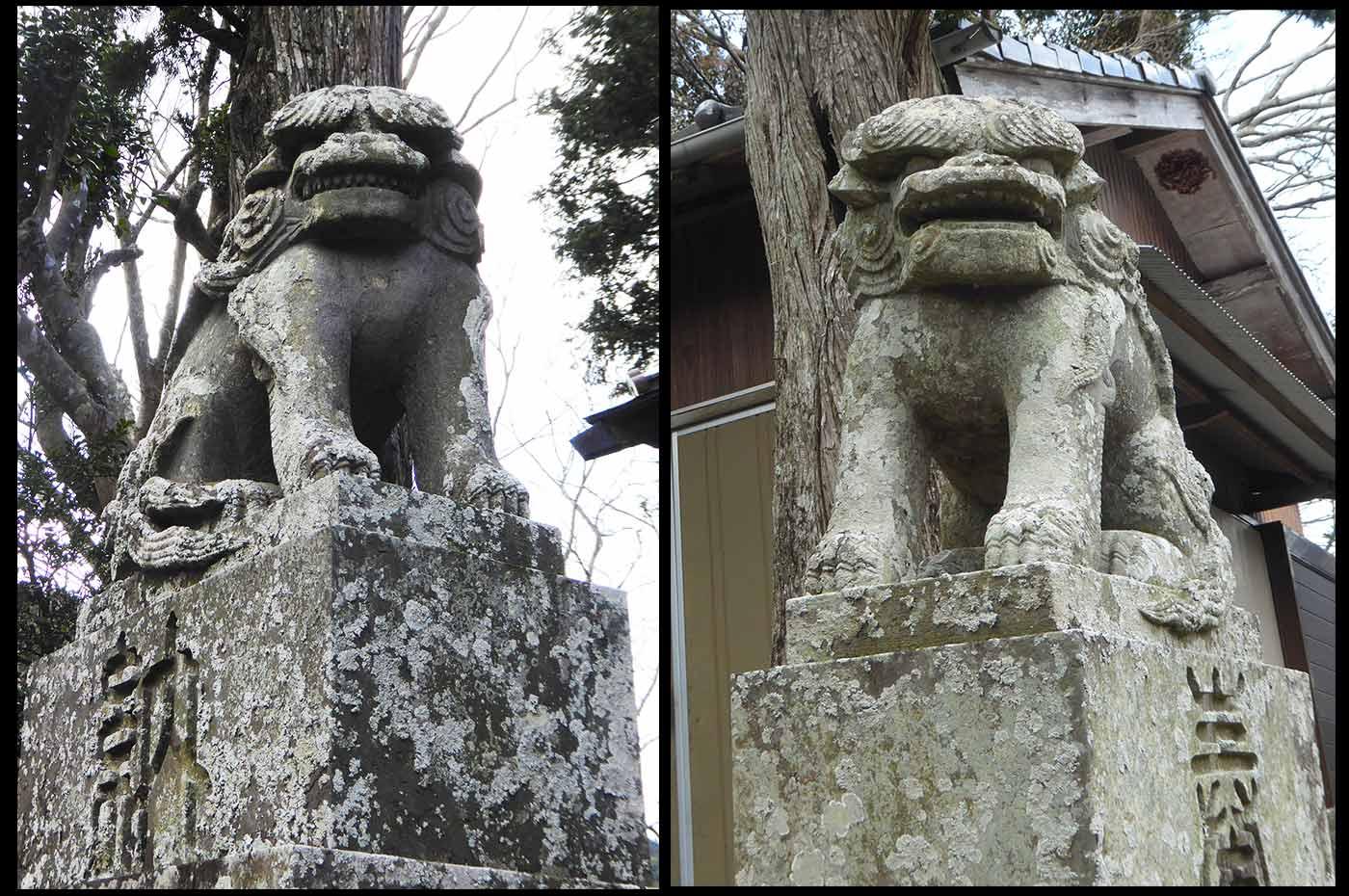 滝田神社の狛犬の画像
