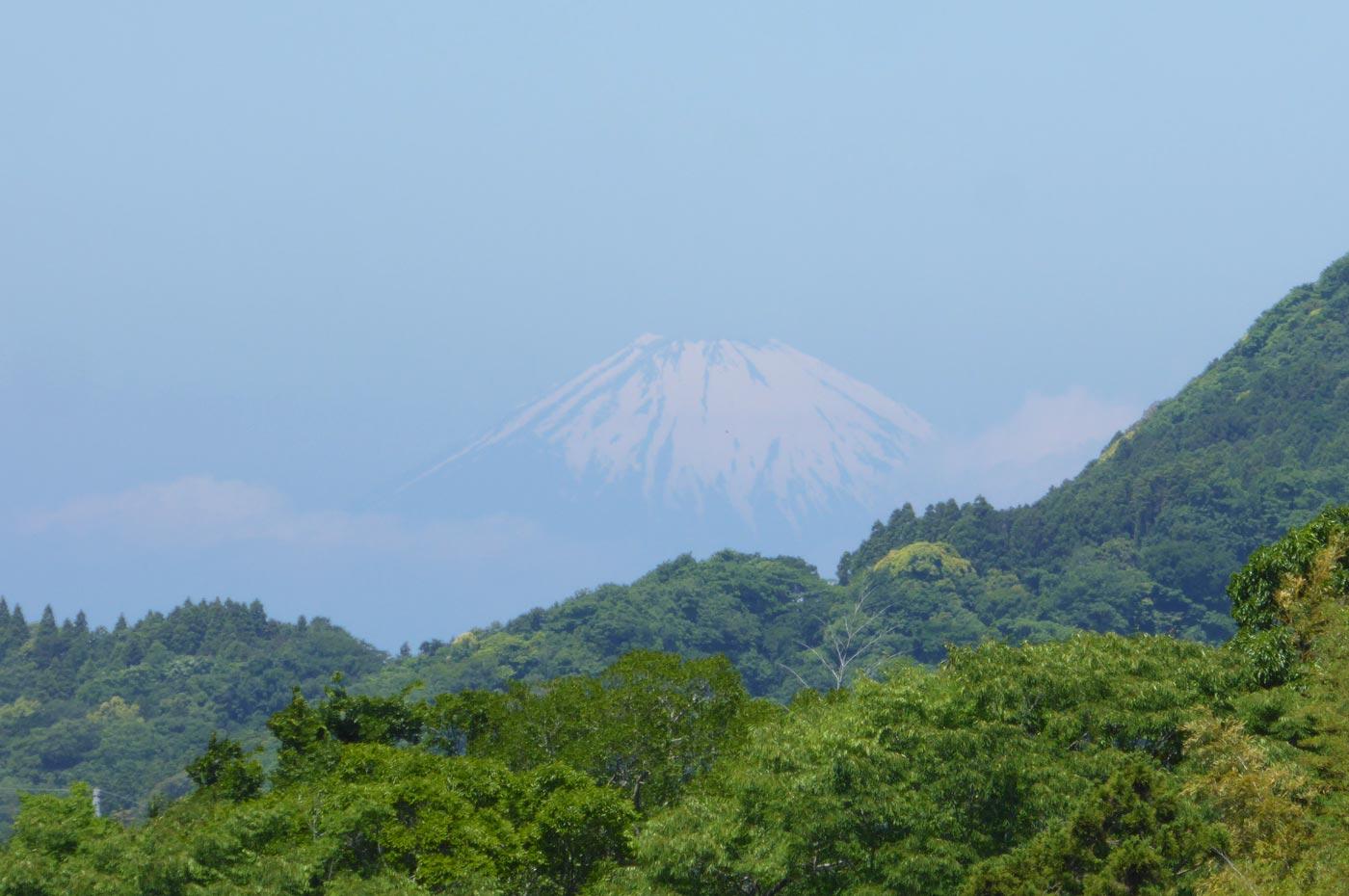 馬森牧場から富士山を撮影