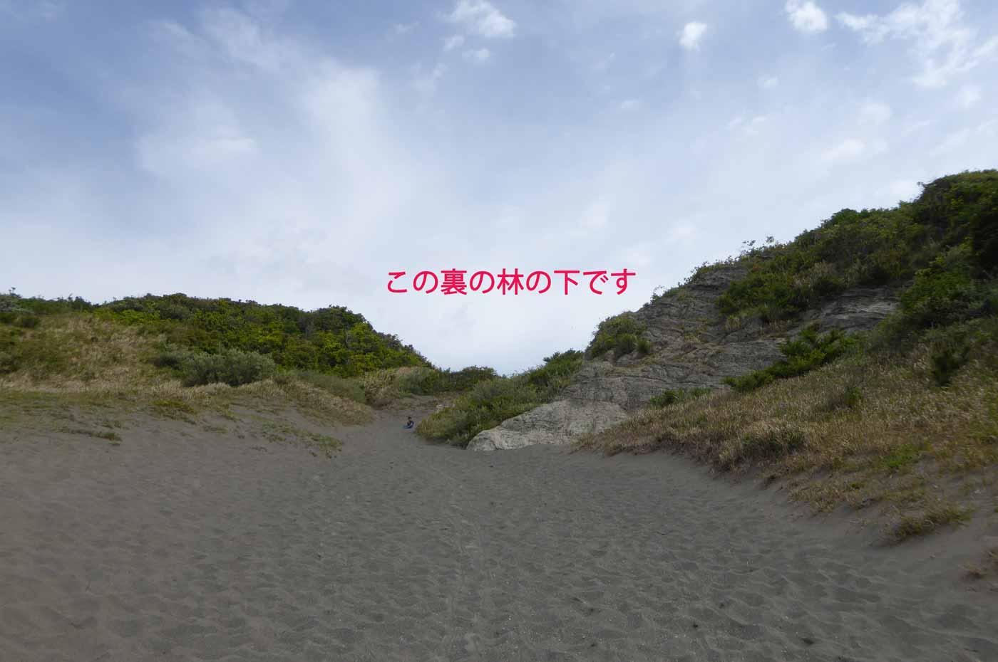 砂山頂上への道