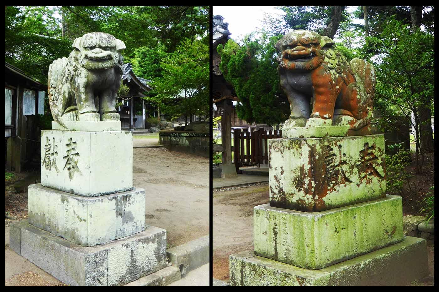 鶴谷八幡宮の狛犬の画像