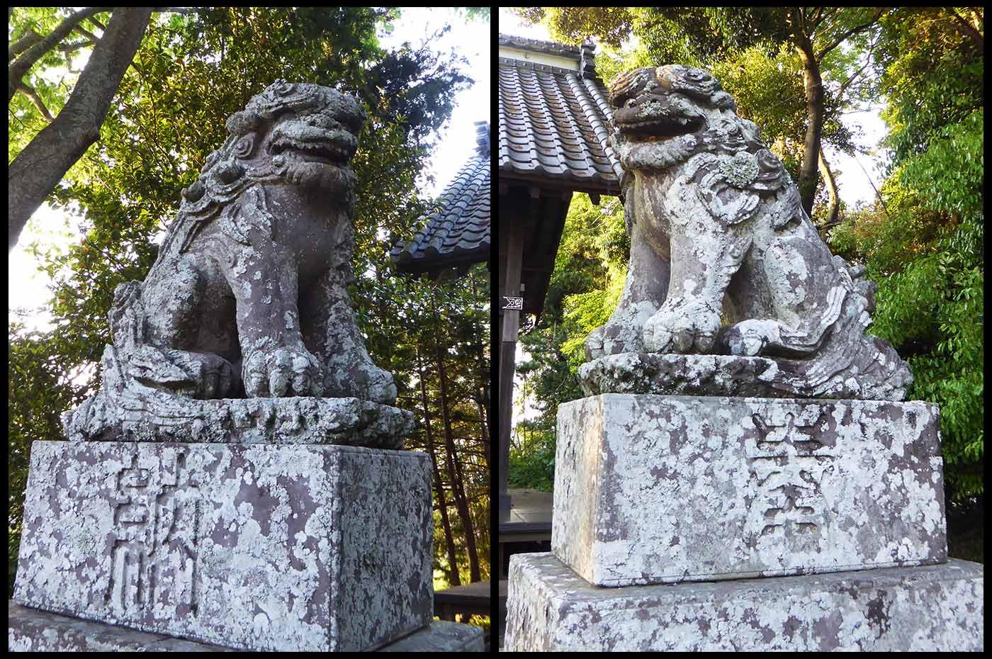 高皇産霊神社狛犬の画像