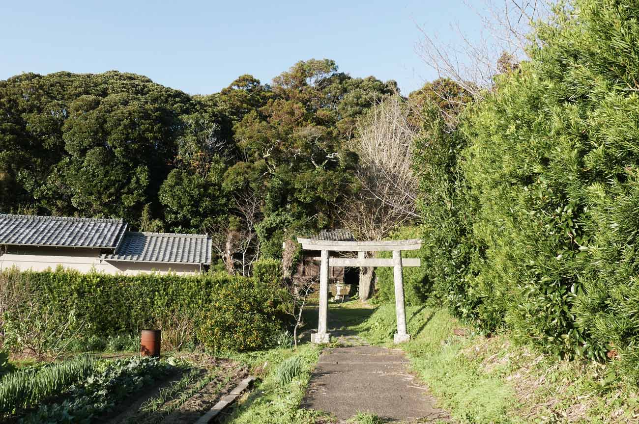 貴船神社の参道と鳥居の画像