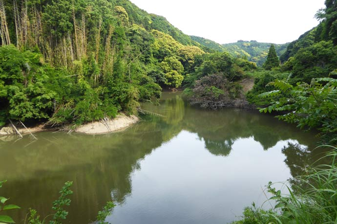増間ダム上流部の画像