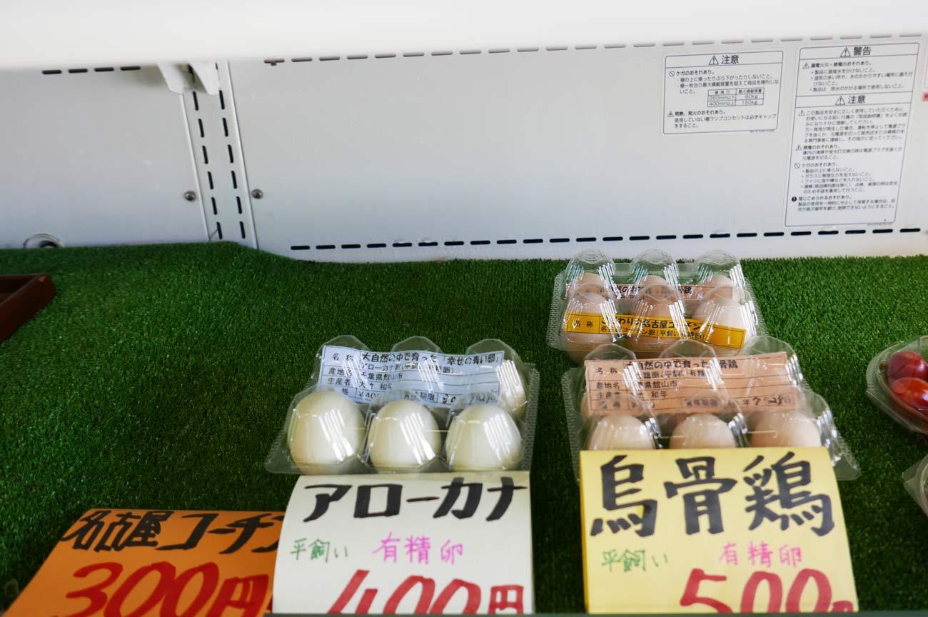 アローカナ、名古屋コーチン、烏骨鶏の卵の画像