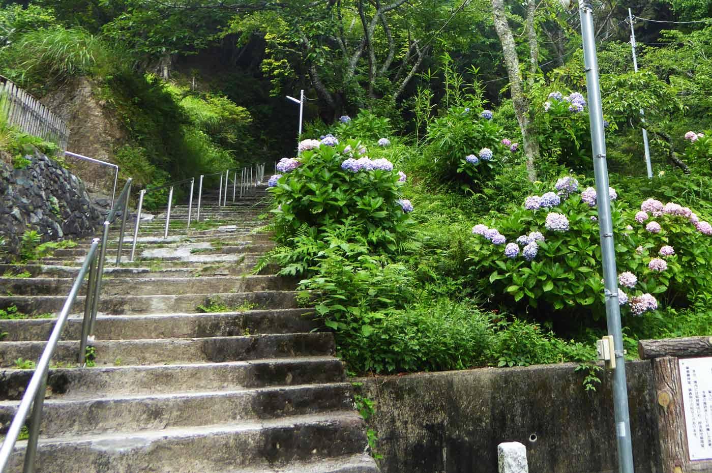 日蓮寺の入口