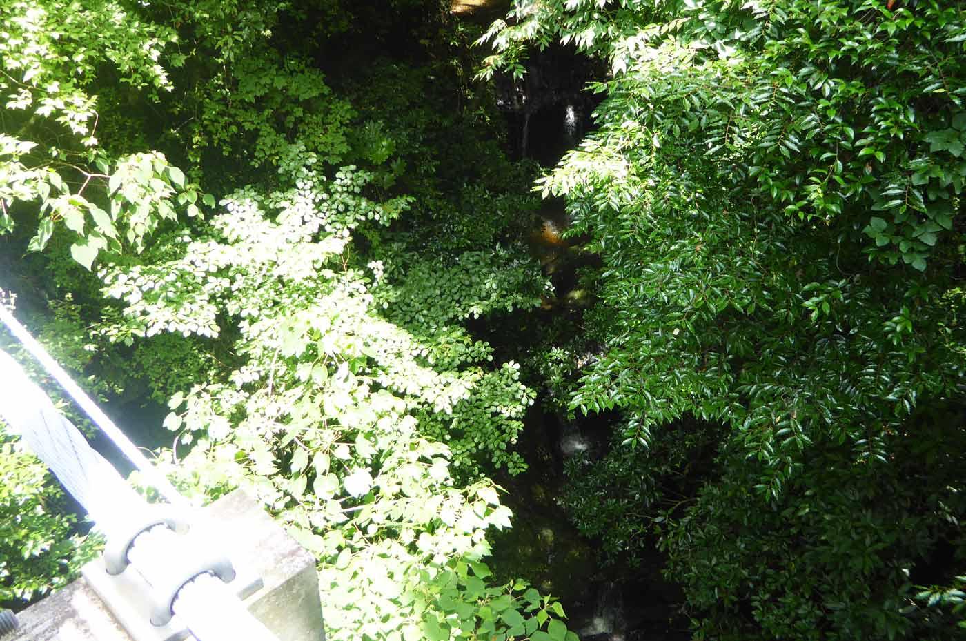 かじか橋下の不動滝