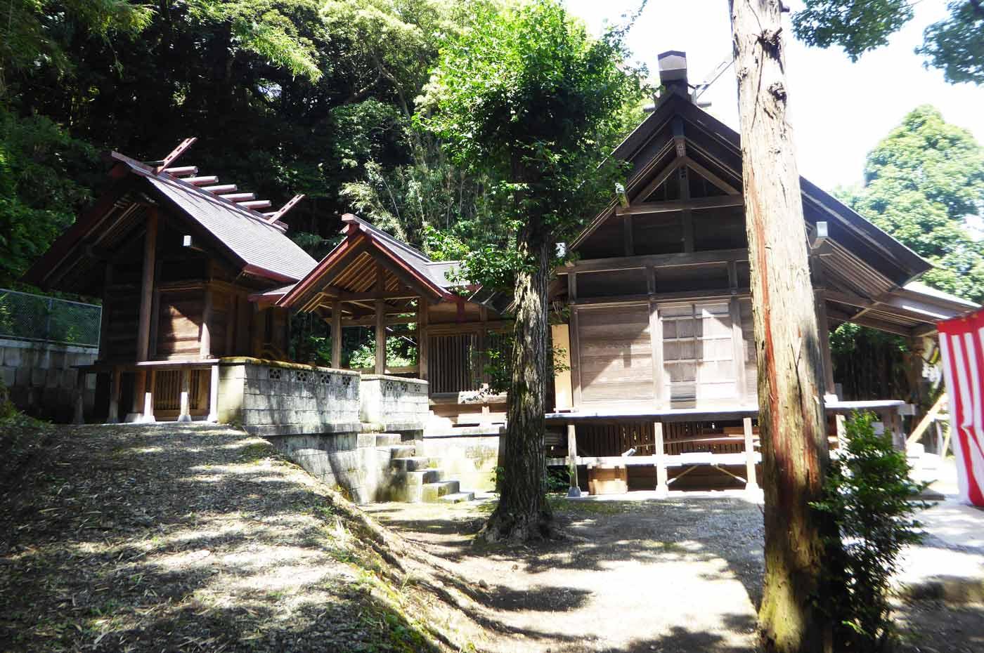 洲宮神社拝殿と本殿の画像