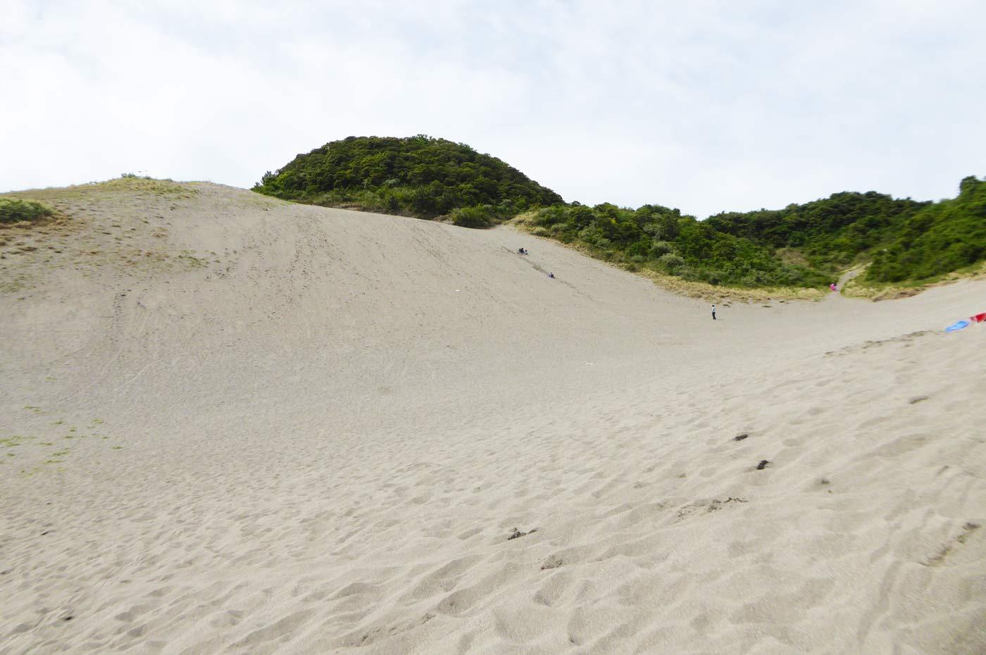館山砂丘の画像