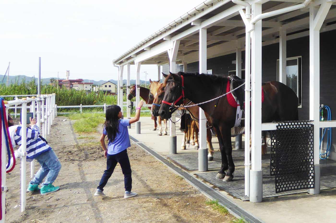 馬と遊ぶ子供達