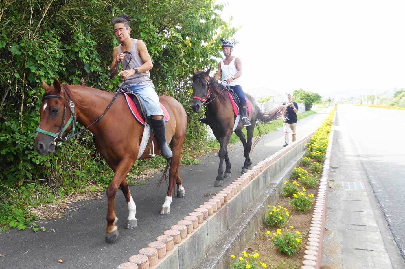 房総フラワーラインを馬で散歩(店の前)