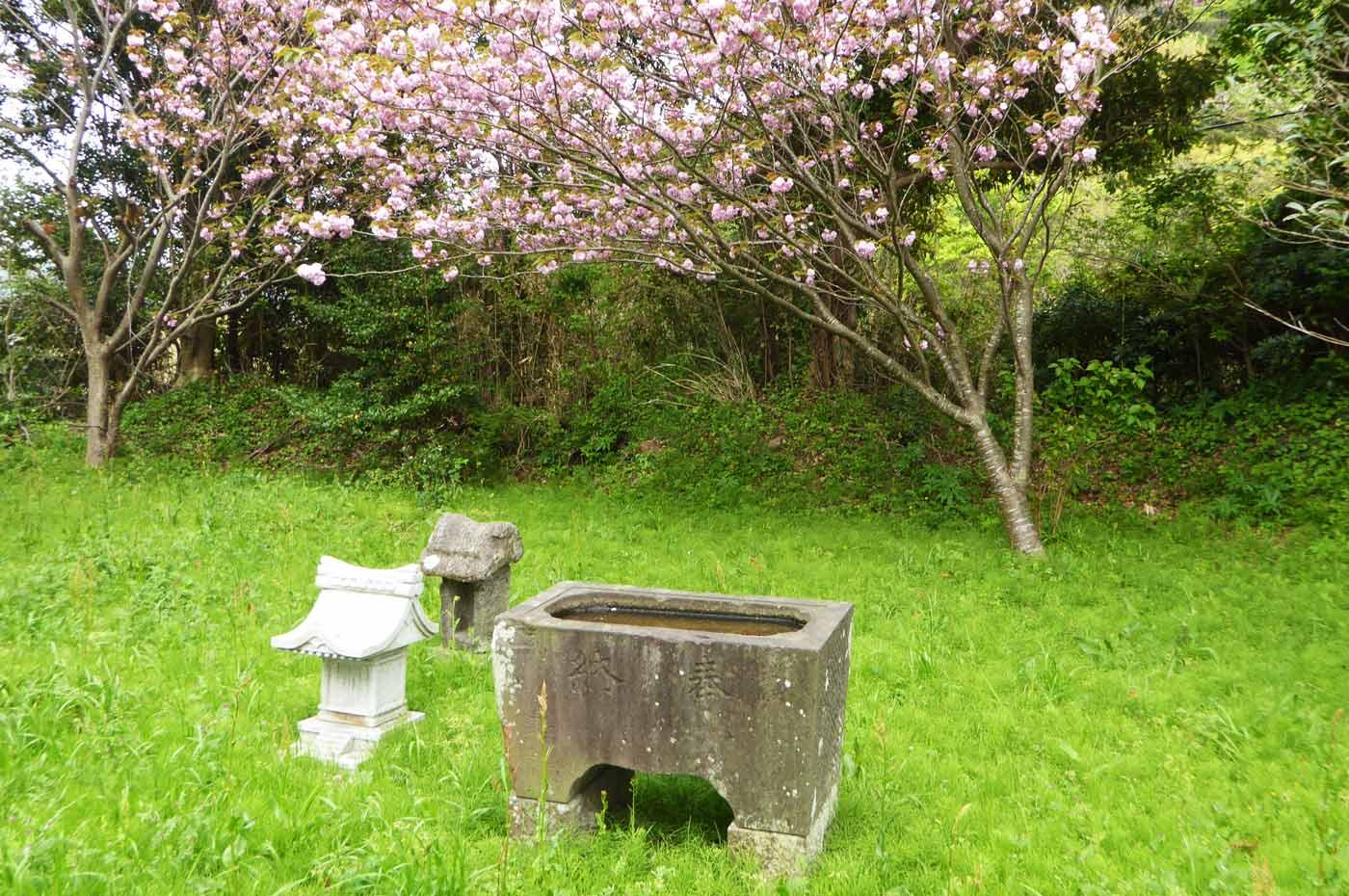 鶴ヶ浜八幡神社手水石の画像