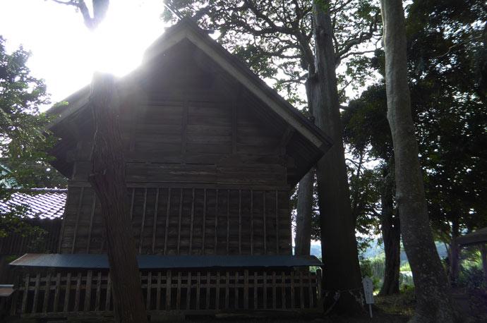 莫越山神社の御神木
