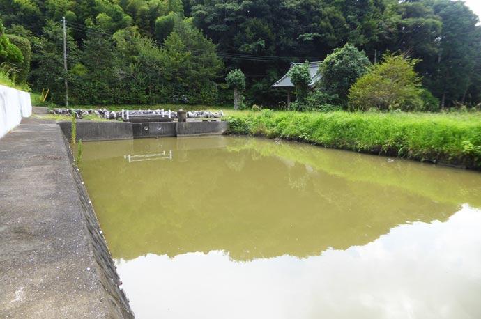慈雲寺前の右の溜池