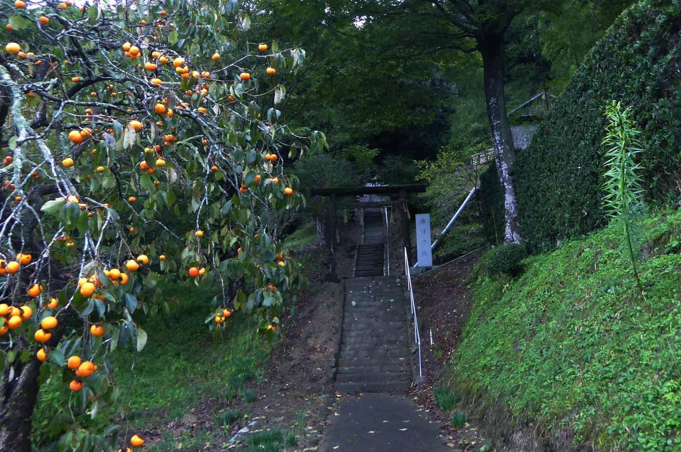 春日神社拝殿への階段