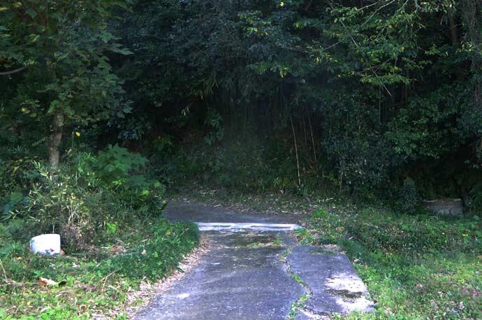 平松城址への道のり(最初のカーブ)