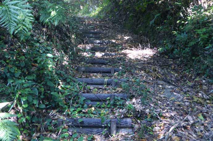 平松城址への道のり(案内板先の階段)
