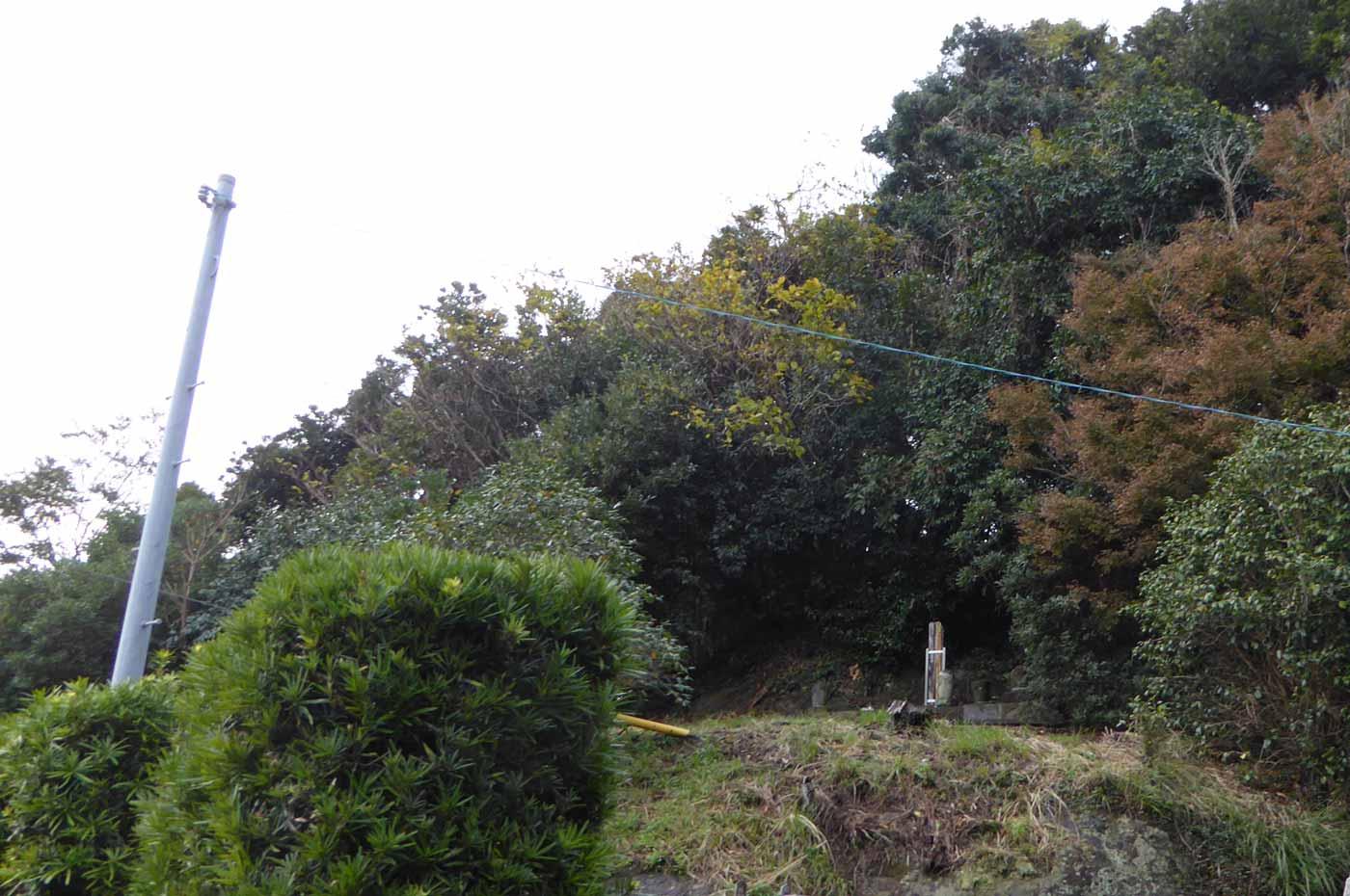 海禅寺裏山の画像
