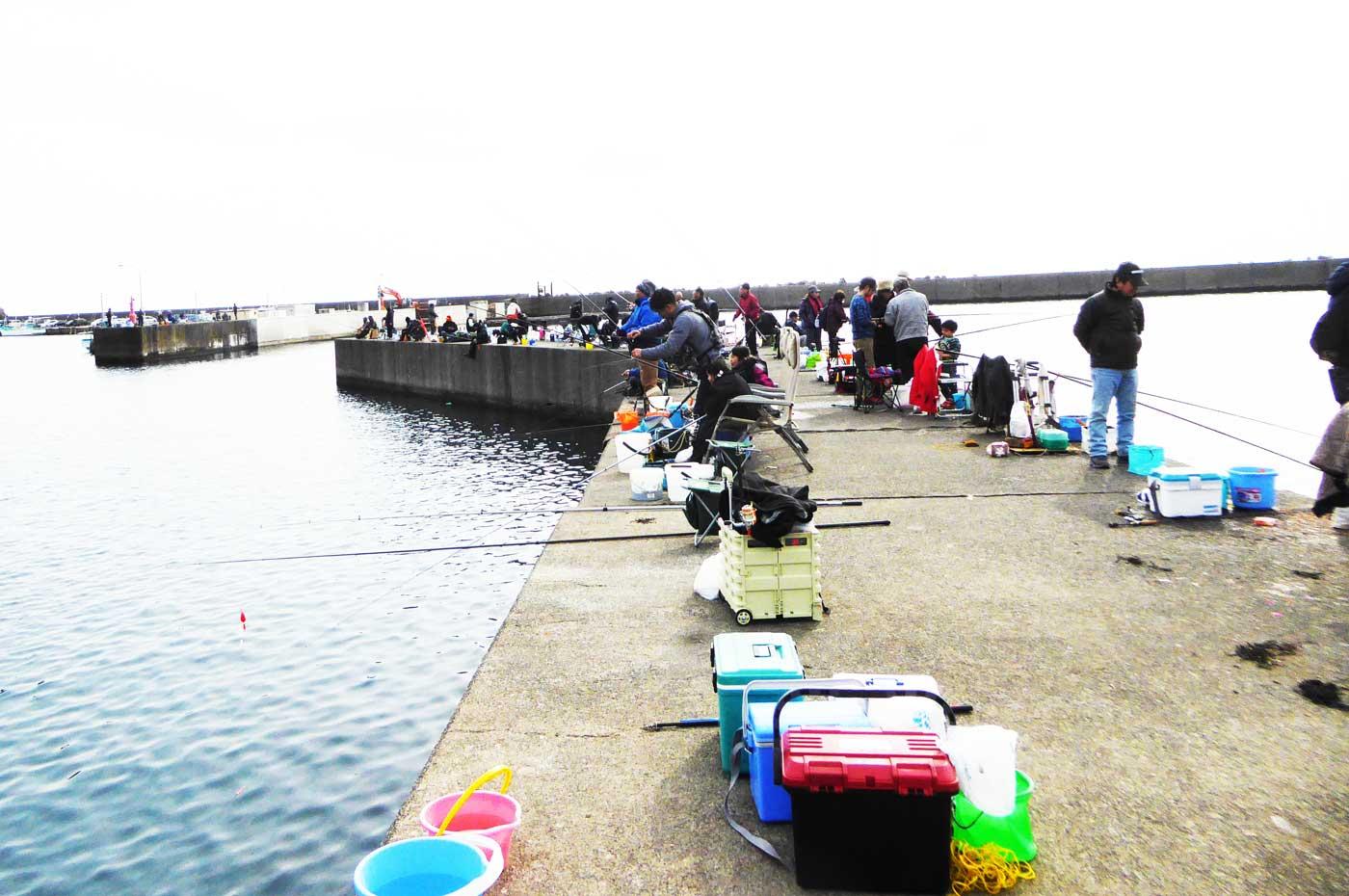 小湊漁港の突堤の画像