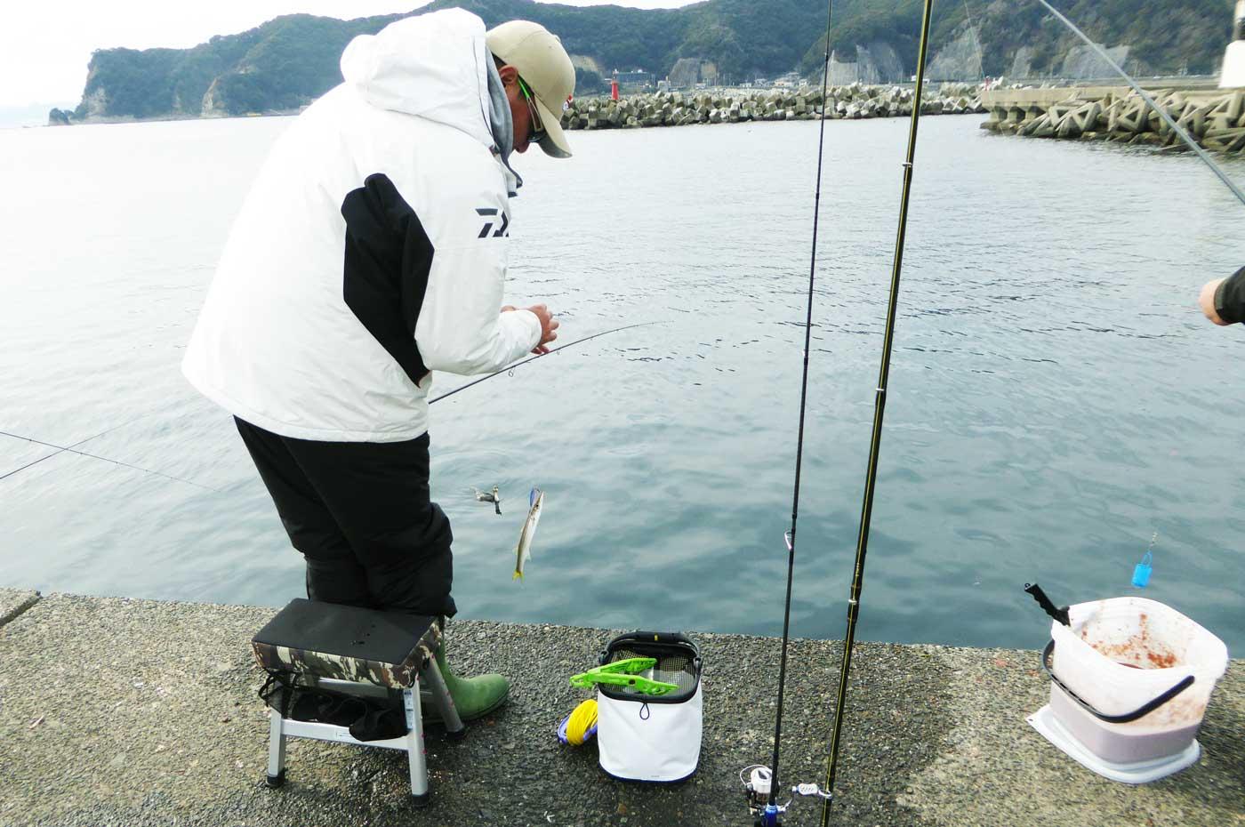 カマスを釣る釣り人の画像