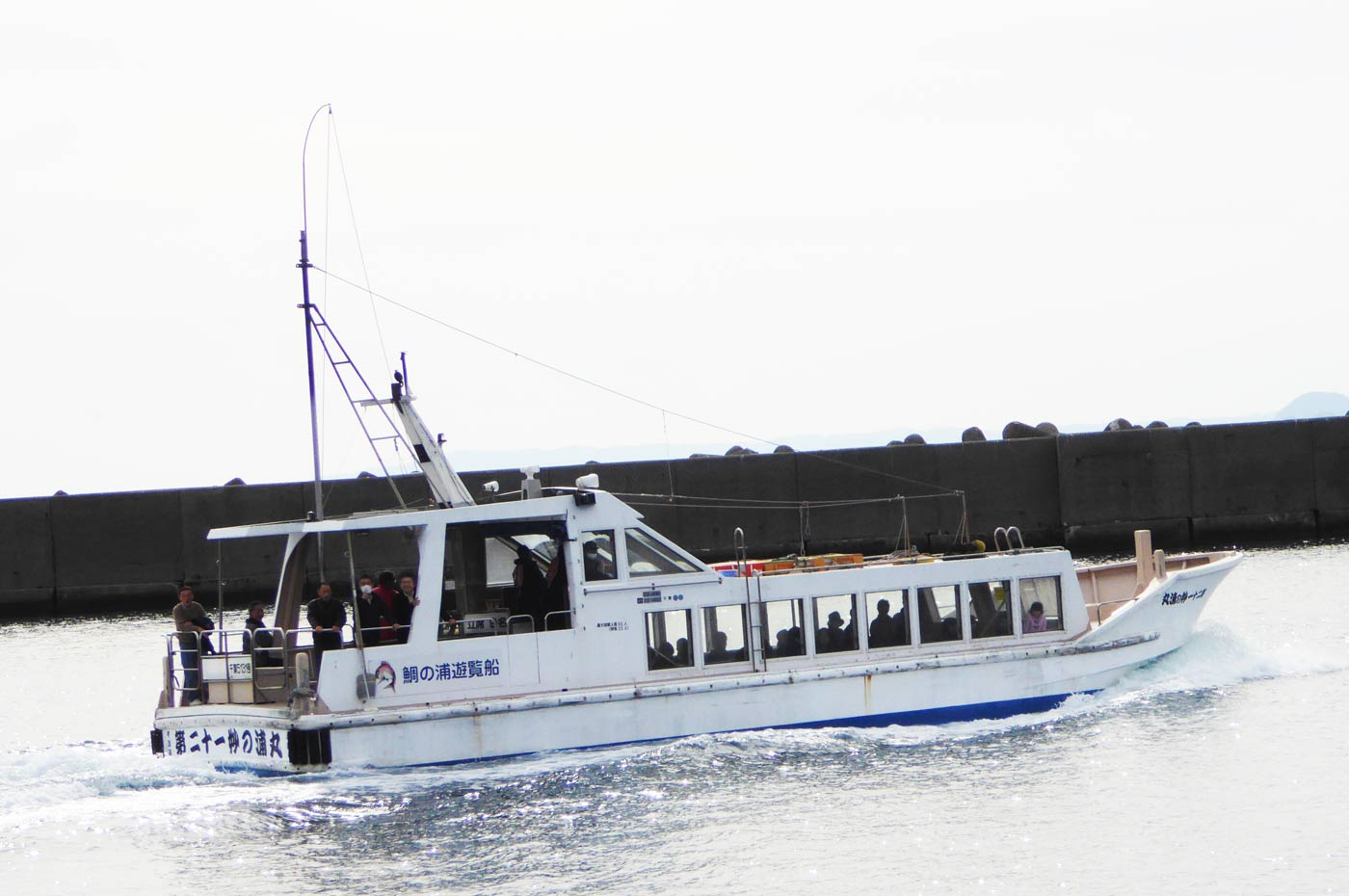 鯛の浦遊覧船の画像