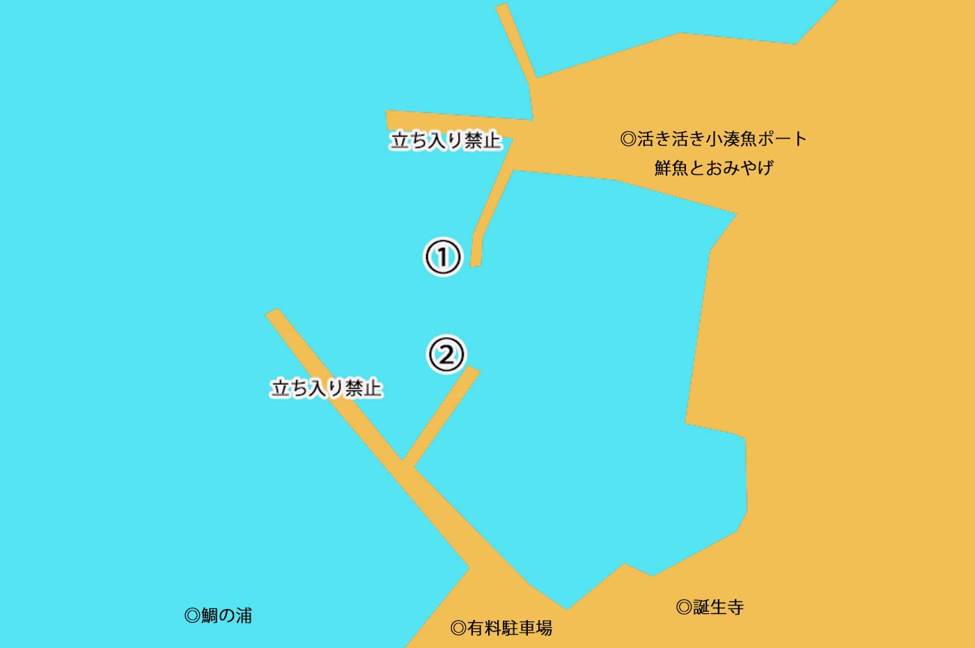 小湊港のポイント図