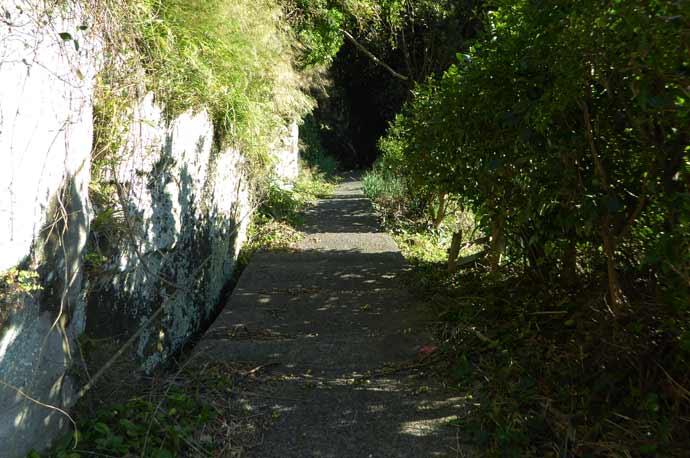 岡本城址への上り坂の画像