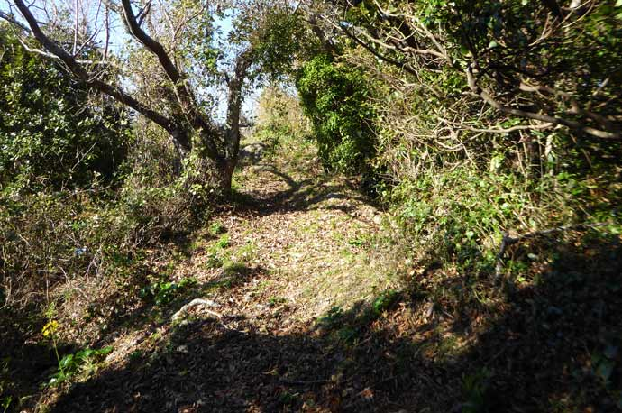 岡本城址石碑奥の上り坂の画像