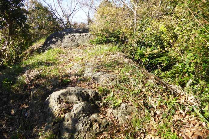 岡本城址石碑奥の上り坂の画像2