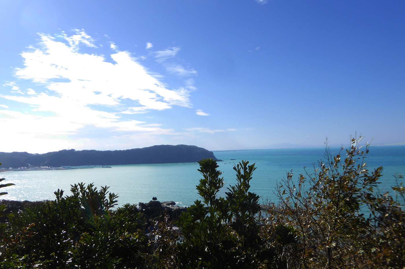 岡本城址から富浦湾を一望