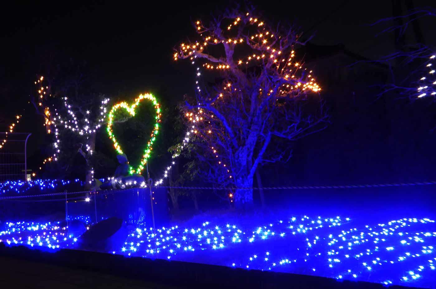 伏姫公園イルミネーション全景