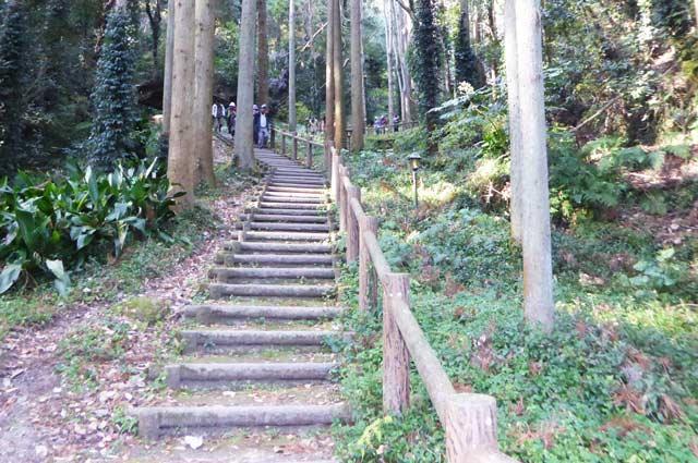 伏姫籠穴ハイキングコースの画像