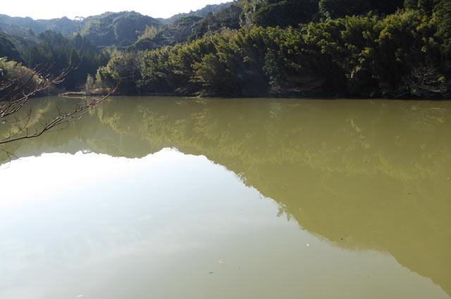 沼サンゴ層横の堰の画像