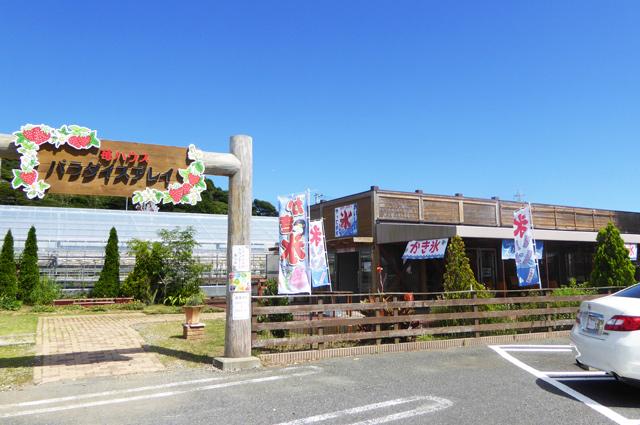 富浦いちご狩りセンターの店舗外観