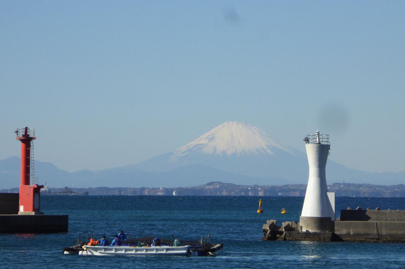 勝山漁港の富士山の画像