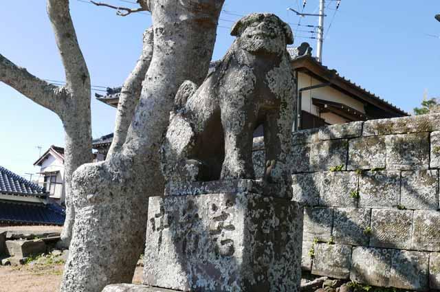 浅間神社狛犬(左)の画像