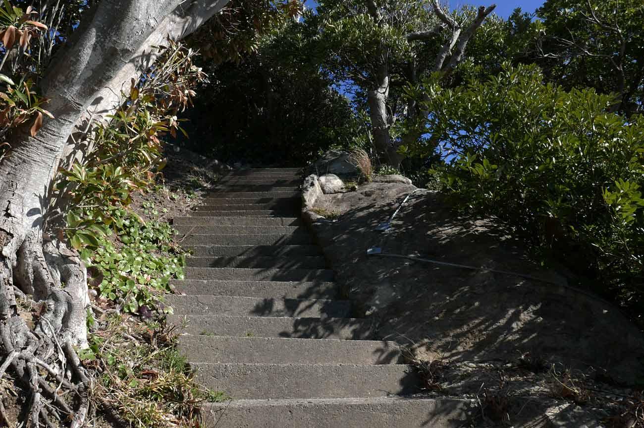 浅間神社頂上への階段の画像