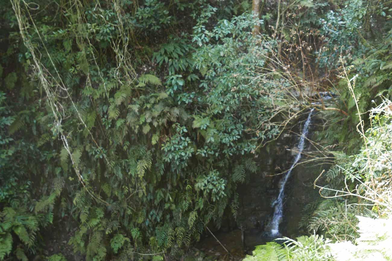 安房グリーンライン菅田の滝の画像