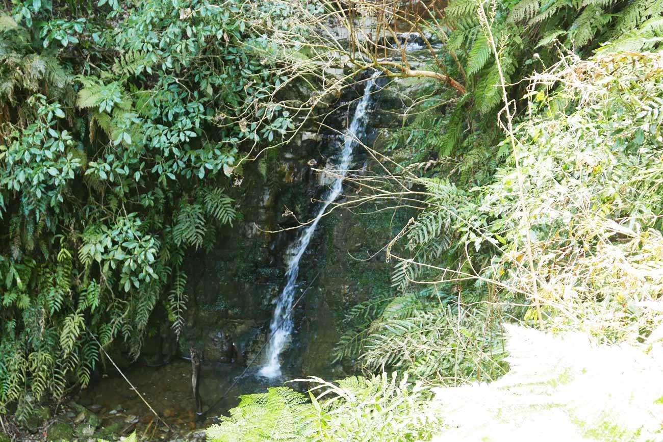 安房グリーンライン菅田の滝の滝壺の画像