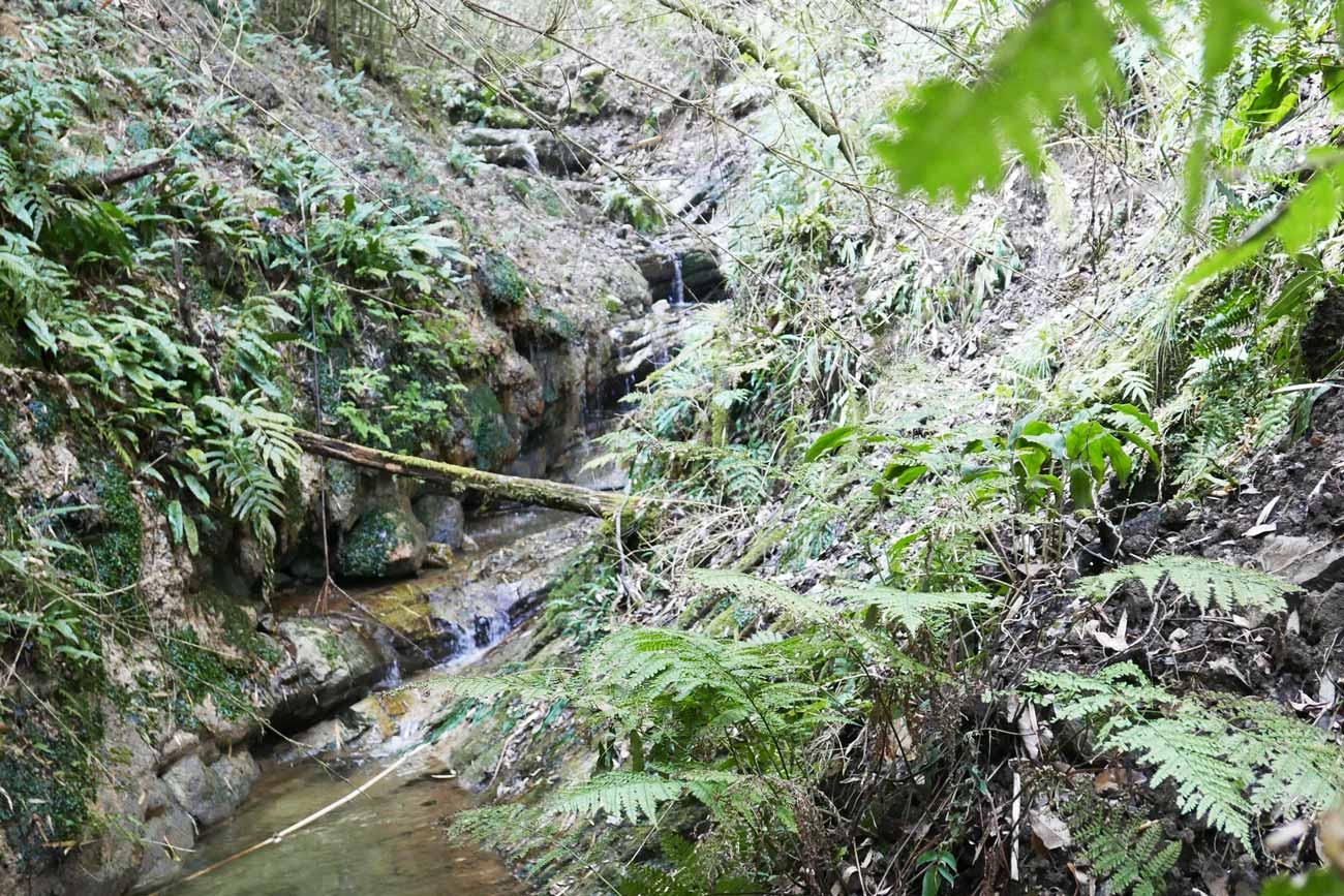 安房グリーンライン菅田の滝の上流の画像
