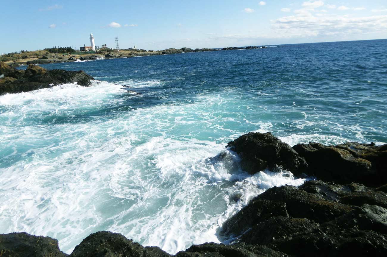 珍宝島左側のポイント