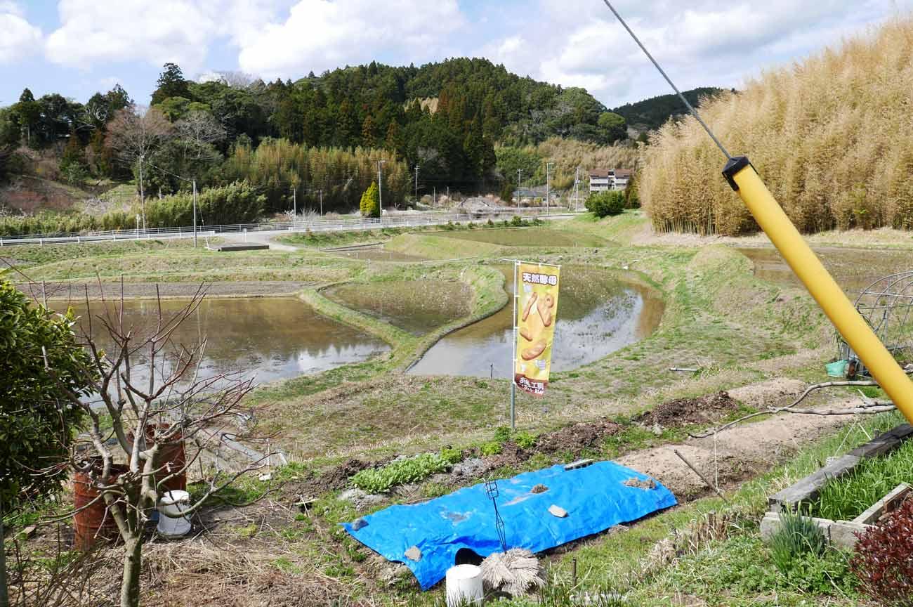 あぱん工房周辺の田園風景の画像